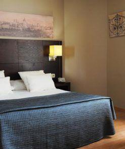 Hotel adaptado Ganivet