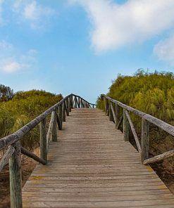 Hoteles adaptados en Cádiz