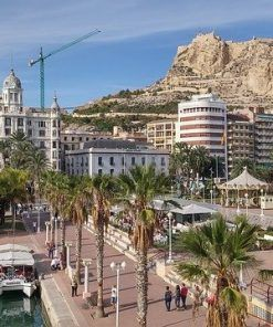 Hoteles adaptados en Alicante